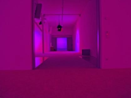 Purple Dream House